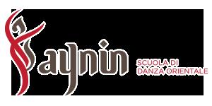 logo_aynin
